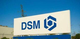 DSM Dyneema fiber SB71