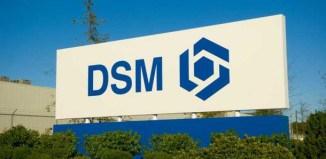DSM Greenville