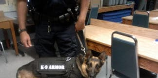 K-9 armor vests give dogs up to date technology